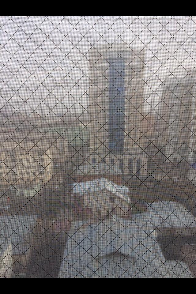 Сетки respilon на окне